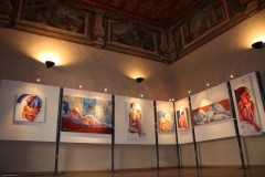 Mostra Villa Ghirlanda  - Cinisello Balsamo